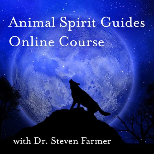 Animal Spirit Guides Online Course