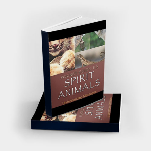 Pocket Guide to Spirit Animals book on understanding messages from your animal spirit guides, written by Dr. Steven Farmer